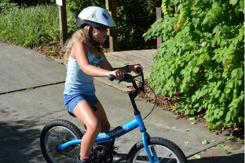 pedal action pre bike